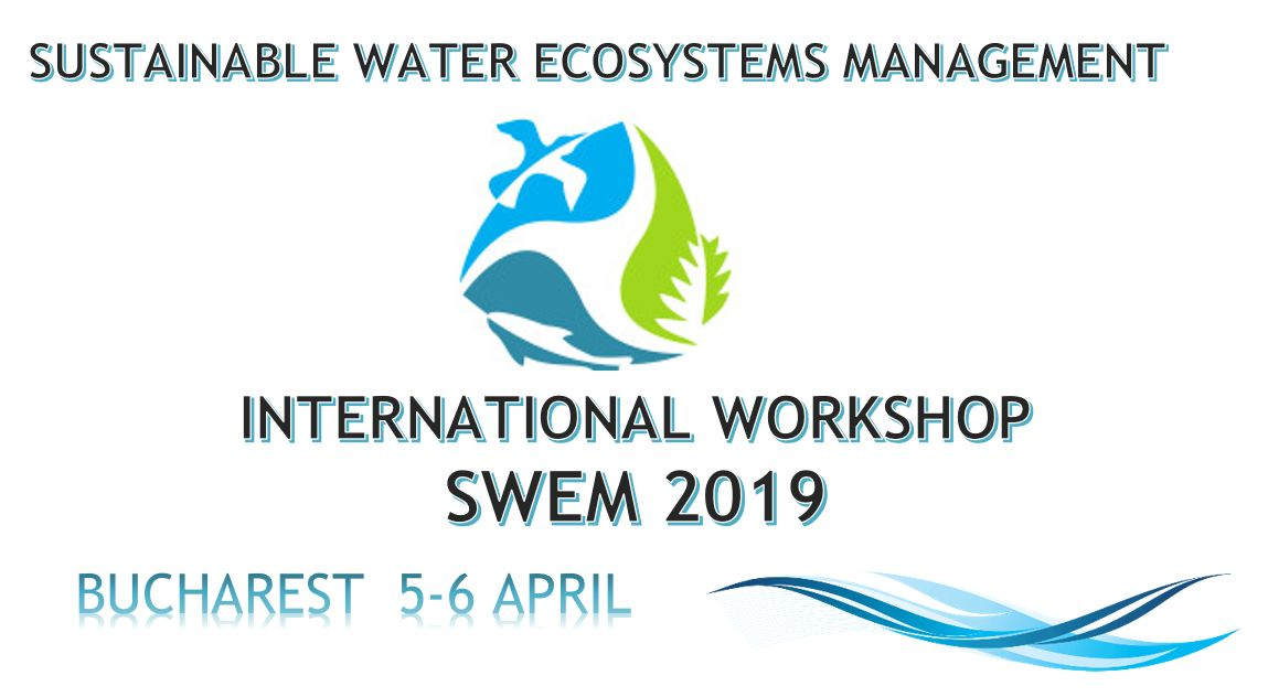 Workshop International SWEM-2019